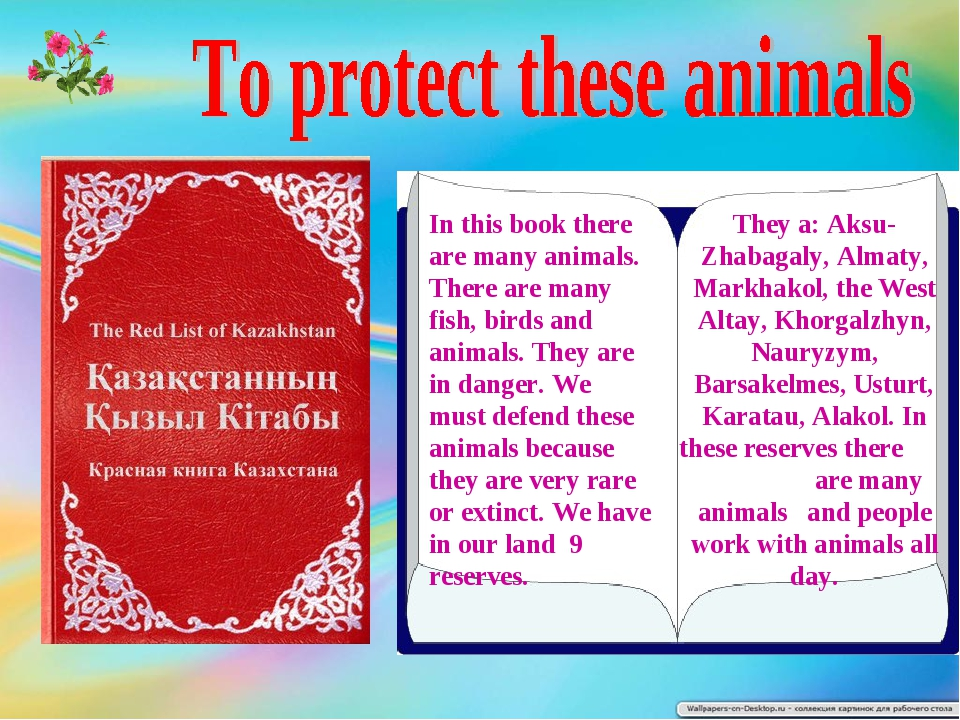 In this book there are many animals. There are many fish, birds and animals....