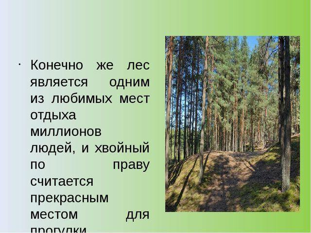 Конечно же лес является одним из любимых мест отдыха миллионов людей, и хвой...