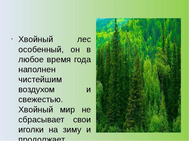 Хвойный лес особенный, он в любое время года наполнен чистейшим воздухом и с...