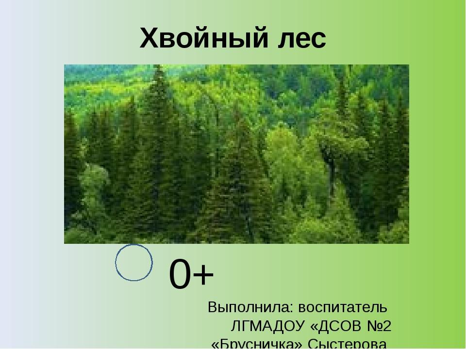 Хвойный лес 0+ Выполнила: воспитатель ЛГМАДОУ «ДСОВ №2 «Брусничка» Сыстерова...