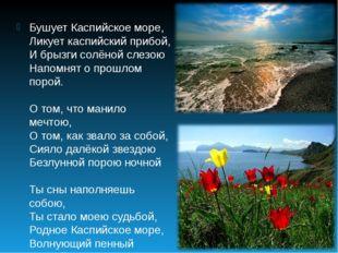 Бушует Каспийское море, Ликует каспийский прибой, И брызги солёной слезою Нап