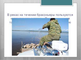 В реках на течении браконьеры пользуются «сплавными сетями». Эта конструкция
