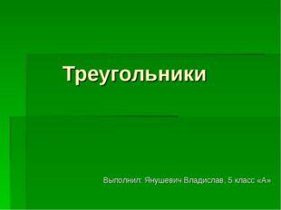 Треугольники Выполнил: Янушевич Владислав, 5 класс «А»