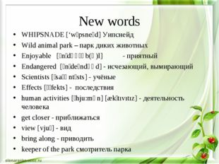 New words WHIPSNADE ['wɪpsneɪd] Уипснейд Wild animal park – парк диких животн
