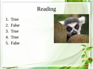 Reading True False True True False