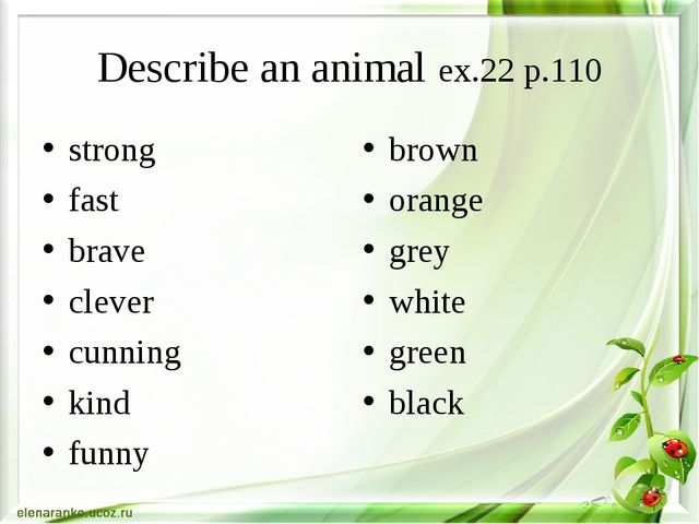 Describe an animal ex.22 p.110 strong fast brave clever cunning kind funny br...