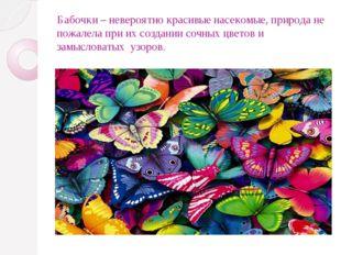 Бабочки – невероятно красивые насекомые, природа не пожалела при их создании