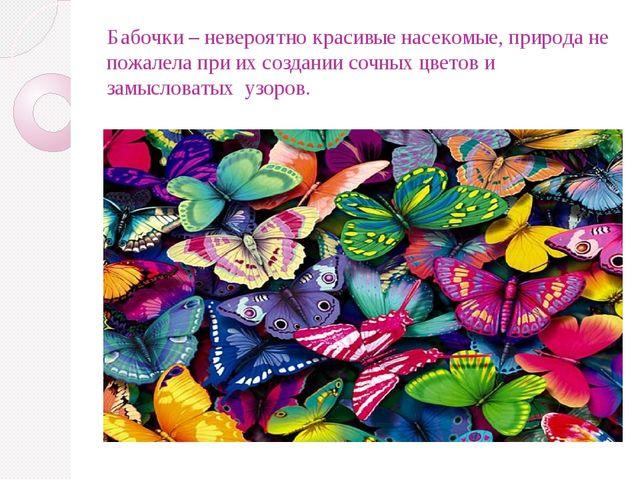 Бабочки – невероятно красивые насекомые, природа не пожалела при их создании...