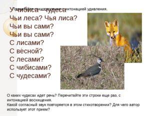 У чибиса –чудеса Чьи леса? Чья лиса? Чьи вы сами? Чьи вы сами? С лисами? С ве