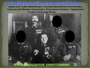 Буденный Семен Михайлович, Блюхер Василий Константинович, Тухачевский Михаил