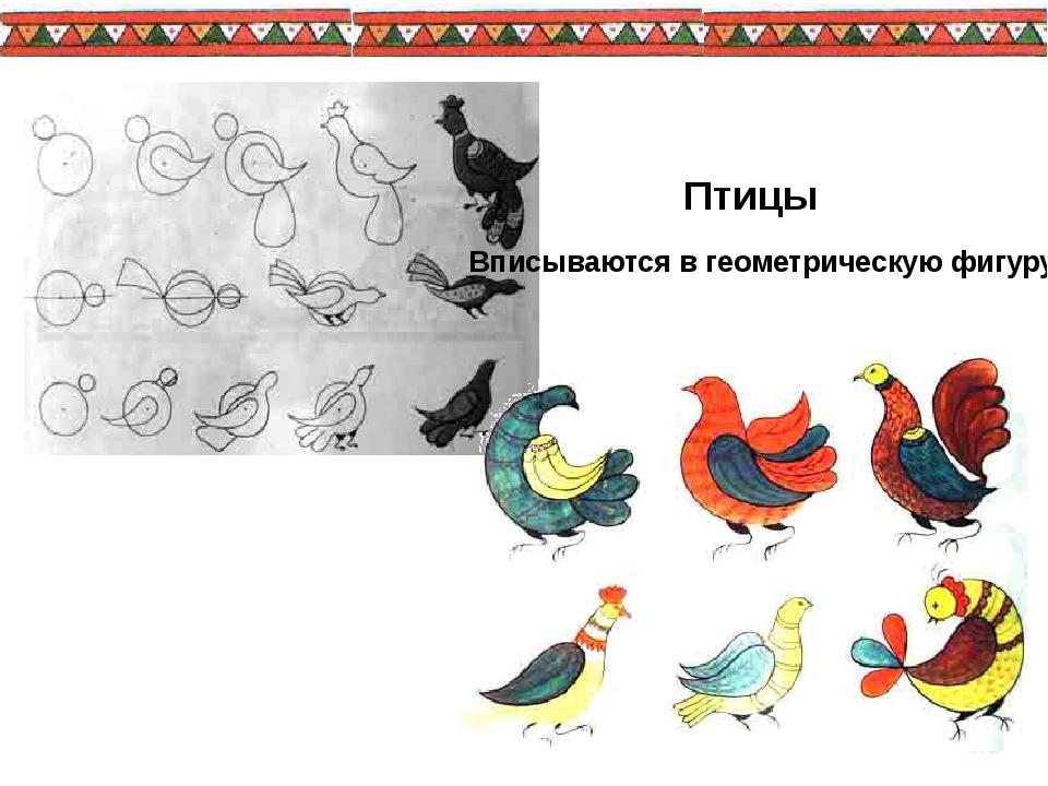 Птицы Вписываются в геометрическую фигуру