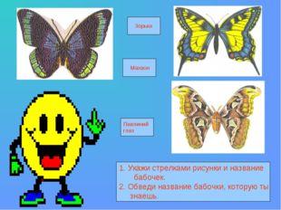 1. Укажи стрелками рисунки и название бабочек. 2. Обведи название бабочки, к