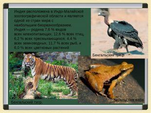 Индия расположена в Индо-Малайской зоогеографической области и является одно