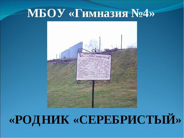 МБОУ «Гимназия №4» «РОДНИК «СЕРЕБРИСТЫЙ»