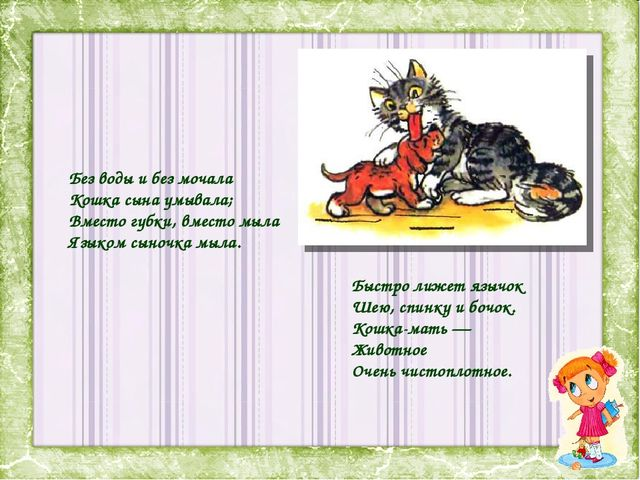Без воды и без мочала Кошка сына умывала; Вместо губки, вместо мыла Языком сы...
