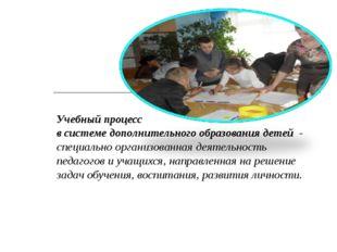 Учебный процесс в системе дополнительного образования детей - специально орга