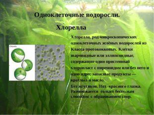 Одноклеточные водоросли. Хлорелла Хлорелла, род микроскопических одноклеточны