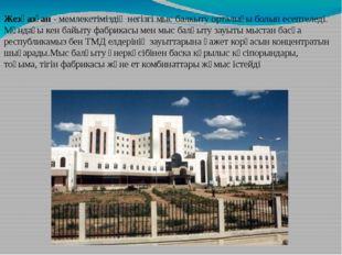 Жезқазған - мемлекетіміздің негізгі мыс балкыту орталығы болып есептеледі. Мұ