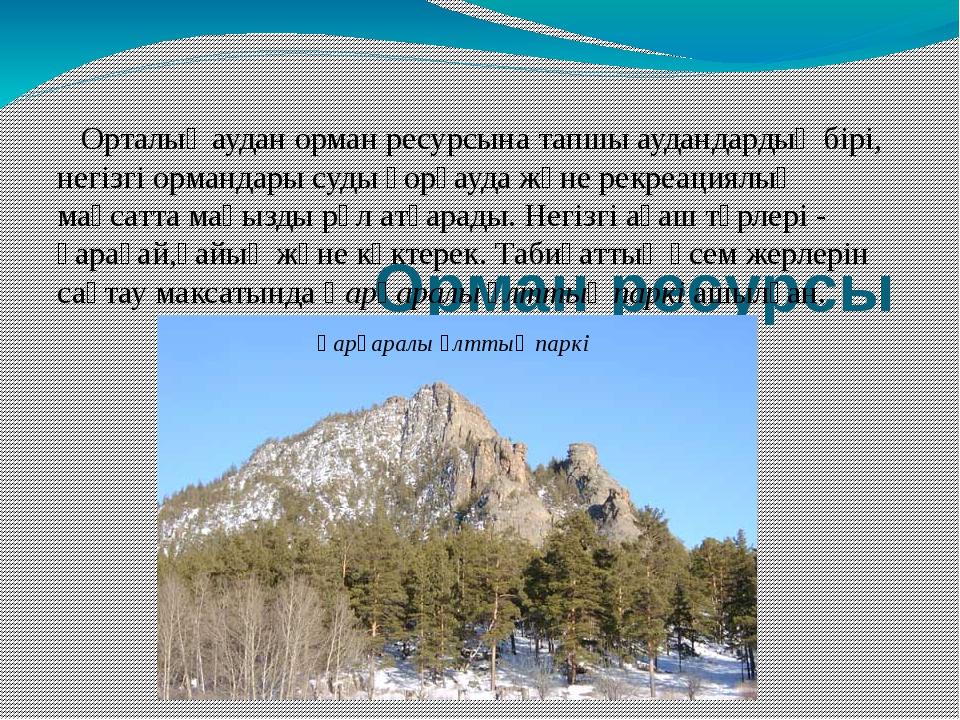 Орман ресурсы Орталық аудан орман ресурсына тапшы аудандардың бірі, негізгі...