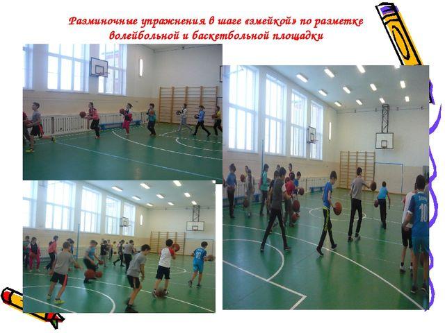 Разминочные упражнения в шаге «змейкой» по разметке волейбольной и баскетболь...