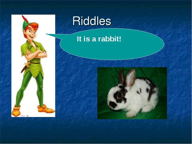 Riddles . It is a rabbit!
