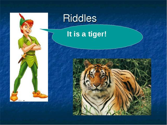 Riddles . It is a tiger!