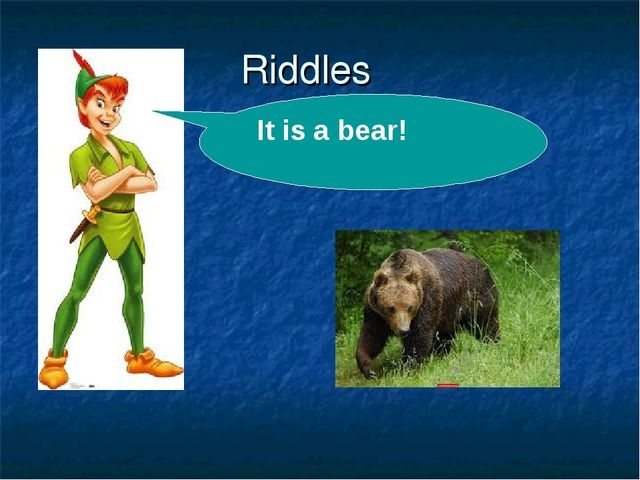 Riddles . It is a bear!