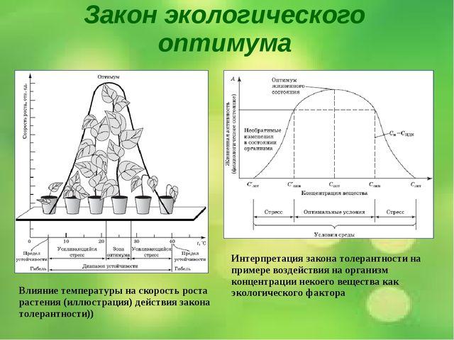Закон экологического оптимума Влияние температуры на скорость роста растения...