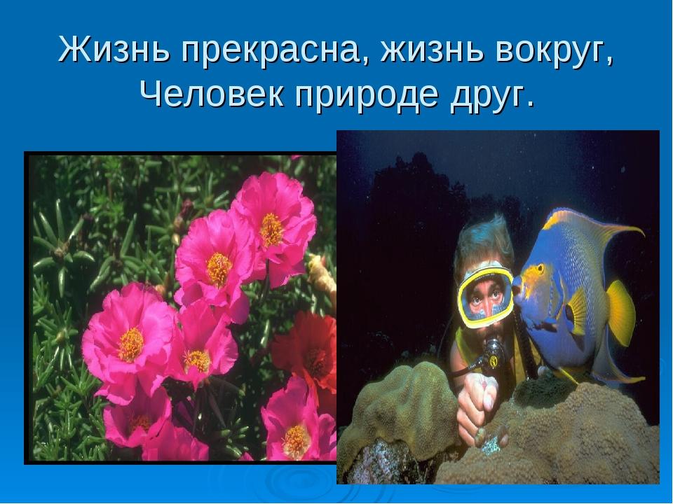 Жизнь прекрасна, жизнь вокруг, Человек природе друг.