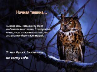 Бывают часы, когда в лесу стоит необыкновенная тишина. Это случается ночью,