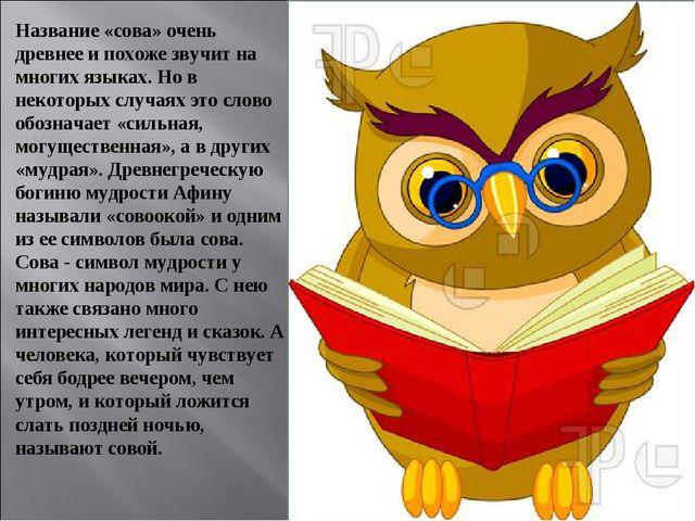 Название «сова» очень древнее и похоже звучит на многих языках. Но в некоторы...