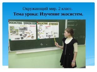 Окружающий мир. 2 класс. Тема урока: Изучение экосистем.