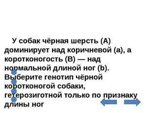 У собак чёрная шерсть (А) доминирует над коричневой (а), а коротконогость (В