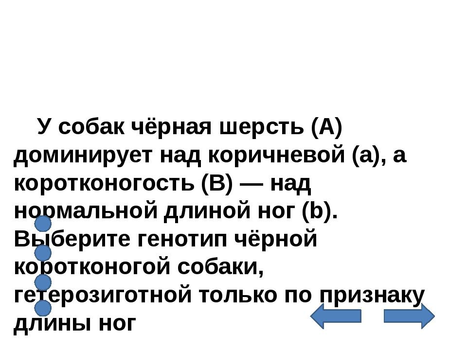 У собак чёрная шерсть (А) доминирует над коричневой (а), а коротконогость (В...