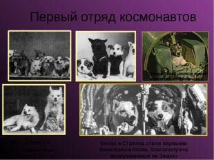 Первый отряд космонавтов Собака Лайка- первое живое существо, побывавшее в ко