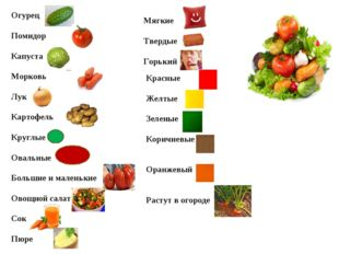Огурец Помидор Капуста Морковь Лук Картофель Круглые Овальные Большие и мале