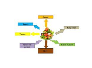 Овощи Где растут Какие бывают Размер Что из них делают Цвет Форма