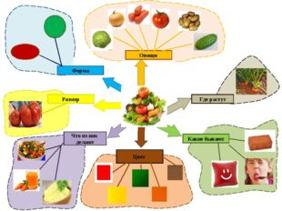 Овощи Где растут Какие бывают Что из них делают Размер Форма Цвет