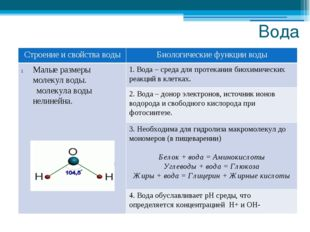 Вода Строение и свойстваводы Биологические функции воды Малые размеры молекул