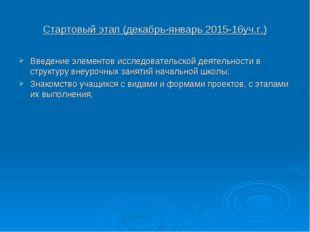 Стартовый этап (декабрь-январь 2015-16уч.г.) Введение элементов исследователь