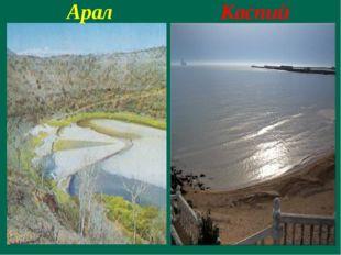 Арал Каспий