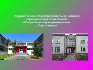Государственное общеобразовательное казённое учреждение Иркутской области «С