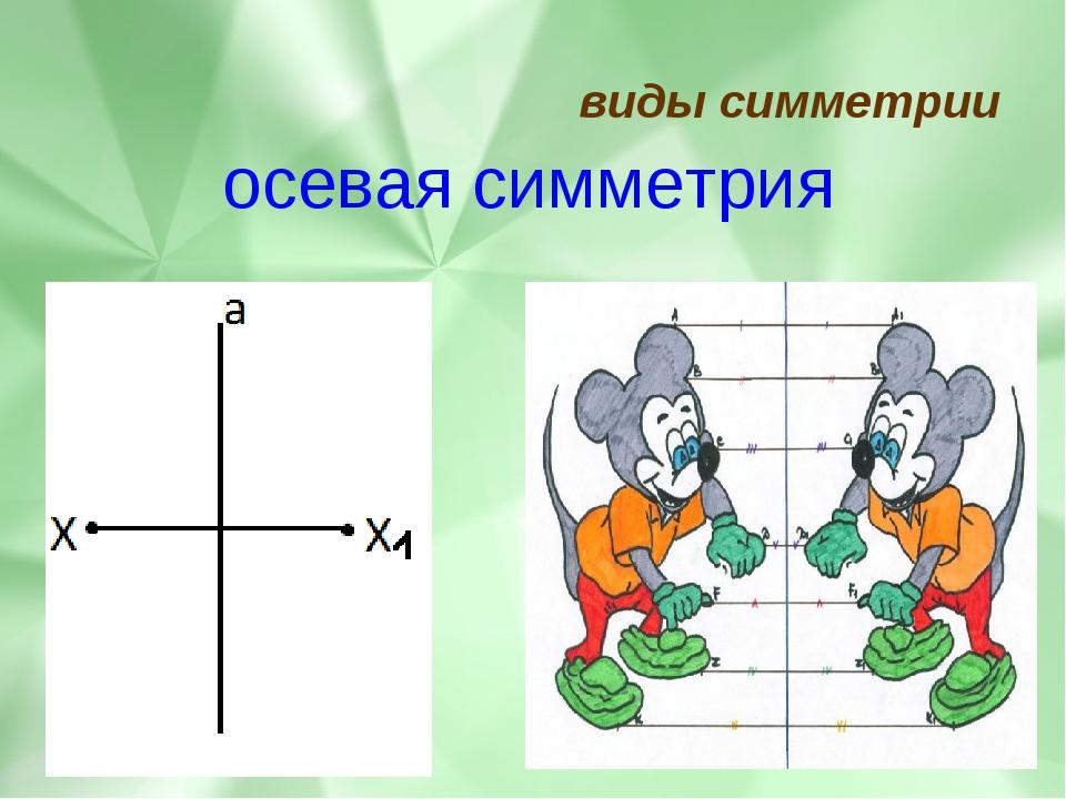 виды симметрии осевая симметрия
