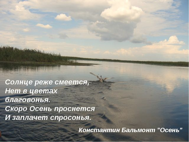 Солнце реже смеется, Нет в цветах благовонья. Скоро Осень проснется И заплач...