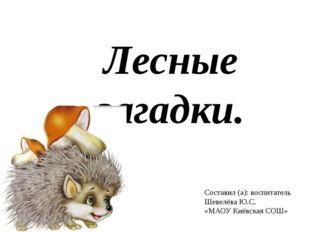 Лесные загадки. Составил (а): воспитатель Шевелёва Ю.С. «МАОУ Киёвская СОШ»