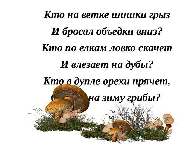 Кто на ветке шишки грыз И бросал объедки вниз? Кто по елкам ловко скачет И вл...