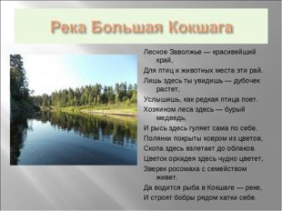Лесное Заволжье — красивейший край, Для птиц и животных места эти рай. Лишь з