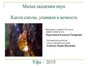 Малая академия наук Капля смолы, упавшая в вечность Уфа - 2015 Выполнила: уче