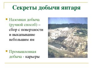 Секреты добычи янтаря Наземная добыча (ручной способ) – сбор с поверхности и