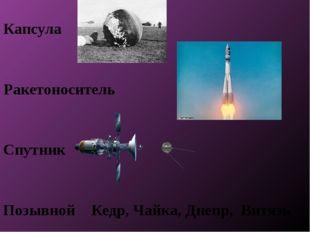 Капсула Ракетоноситель Спутник Позывной Кедр, Чайка, Днепр, Витязь